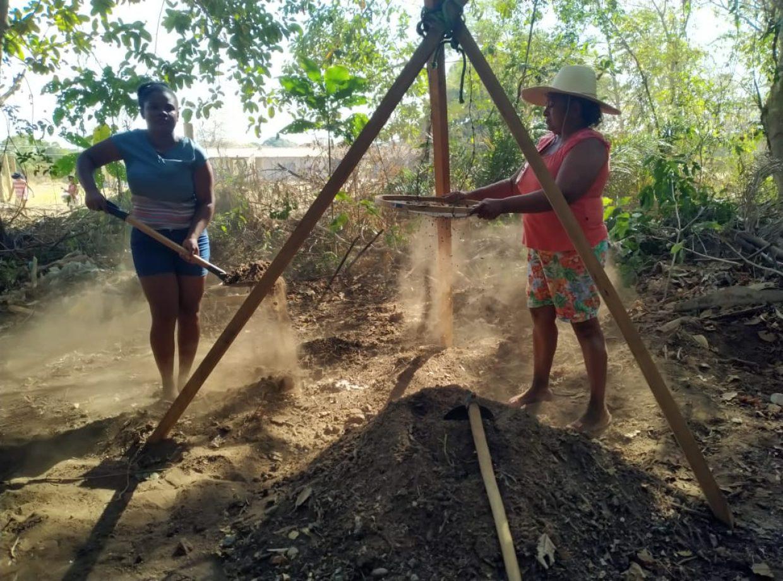 Aquarela Pantanal - viveiros de mudas e sementes pantaneiras (2)